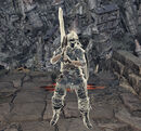Белый фантом (Dark Souls III)