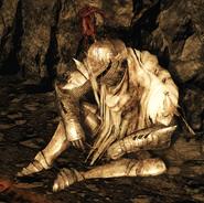 Рыцарь Хейда (Помойка)