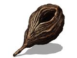 Семя дерева гигантов (Dark Souls III)
