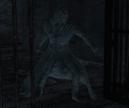 Straid Petrified