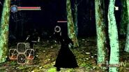 Dark Souls 2- Dual Swordsman Gameplay