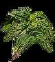 Зеленый цветок.png