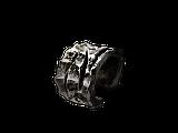 Кольцо гигантов.png