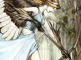 White Winged Archer