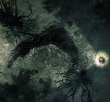 Gianthole2.jpg