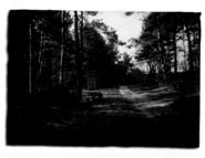 Hunter photo 01