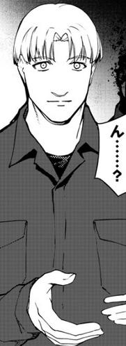 Manga (Post Timeskip)