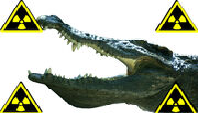 Krokodil i rusland.
