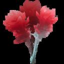 Dashleaf Icon 001.png