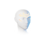 Masque of Taurus Icon.png