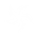 Spinning Star (Sigil) Icon.png