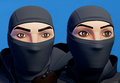 Stealthwork Mask Armour Skin Store Icon 001.png