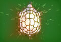 Turtle Flare Store Icon 001.jpg