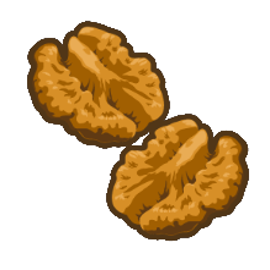 Walnut kernel.png