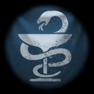 Novosibirsk Emblem