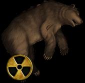 Bear quest