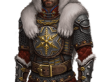 Polar Armor