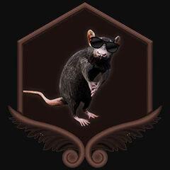 Rat sterminator.jpg
