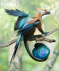 Micro-Feathered Dragon.jpg