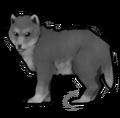 Волк 1 ур.