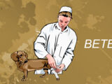 Ветеринар (квест)