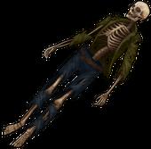 Скелет отшельника