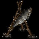 Сушилка (Сушеная рыба)