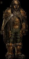 Хитиновая броня