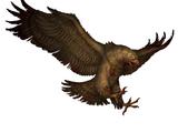 Хищная птица (случайное событие)