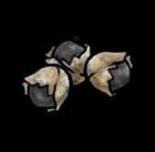 Свинцовая пуля (старая)
