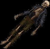 Скелет гражданского