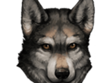 Волк (спутник)