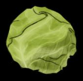 Капуста (старая)