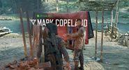 Copeland in Camp