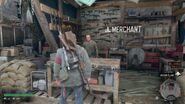Merchant Wizard Island