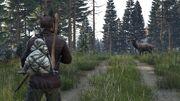 Hunting 1a.jpg