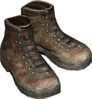 ShoeHikingBrown01.png