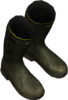 WelliesGreen.png