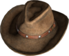 Cowboy Hat Brown.png