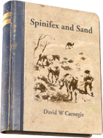 Spinifex and Sand.png