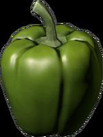Green Peper.png