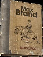 Black Jack.png