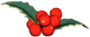 Canina Berries.png