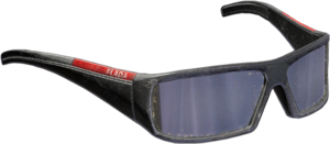 Designer Sunglasses New.png