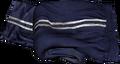 Blue Tracksuit Pants.png