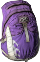 Taloon Backpack VIOLET.png