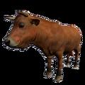 Bull Brown.png