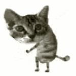 Lesleee's avatar