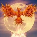 PhoenixMoon641