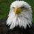 EaglesRage114